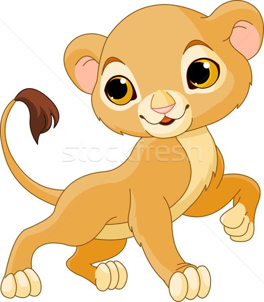 Brave  Lion Cub Stock photo © Dazdraperma