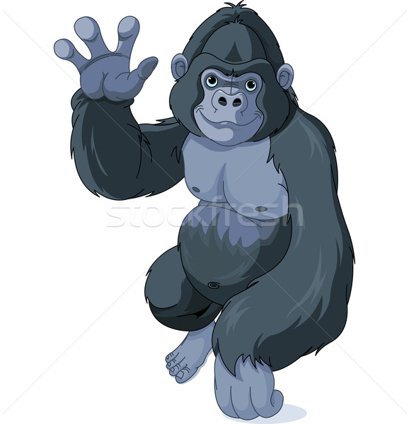 Gorilla Stock photo © Dazdraperma