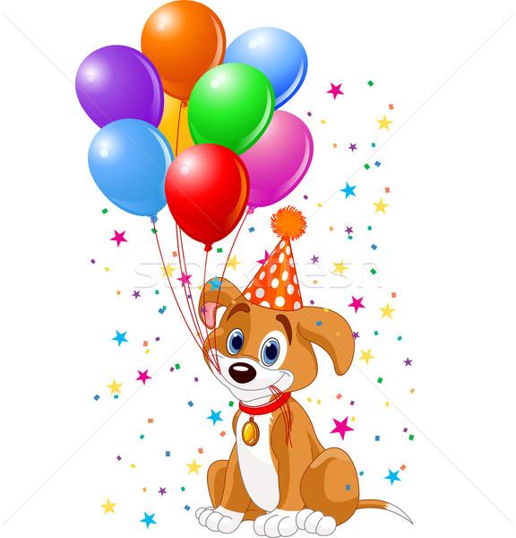 Stockfoto: Verjaardag · puppy · cute · ballonnen · partij · hoed