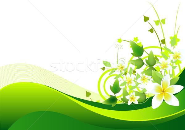 Spring/summer background Stock photo © Dazdraperma