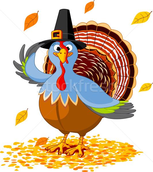 Thanksgiving Turkey Stock photo © Dazdraperma