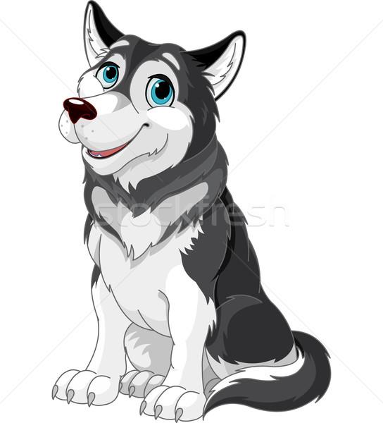 Alasca desenho animado ilustração cão arte lobo Foto stock © Dazdraperma