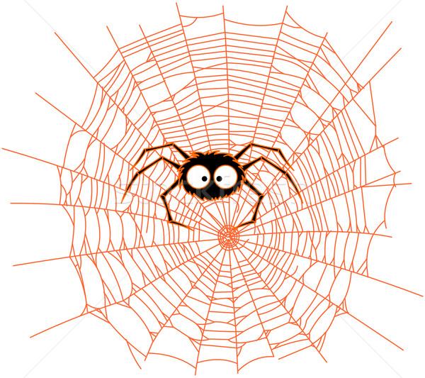 Spider Stock photo © Dazdraperma