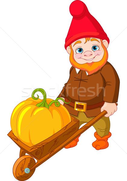 Jardin gnome brouette illustration cute chapeau Photo stock © Dazdraperma