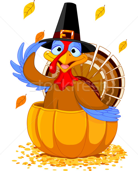 Thanksgiving Turkey in the  pumpkin Stock photo © Dazdraperma