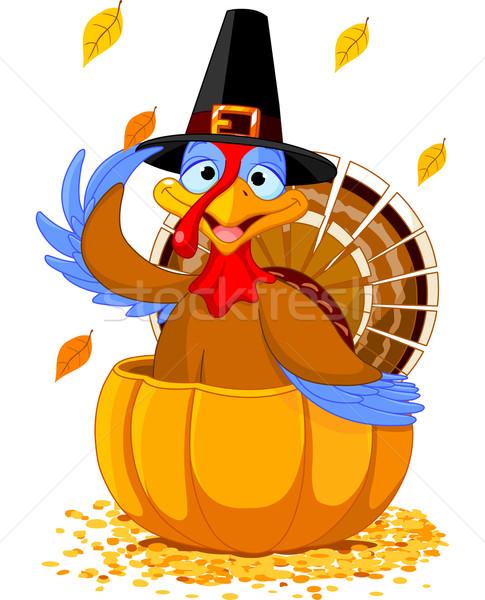 Stock fotó: Hálaadás · Törökország · sütőtök · illusztráció · zarándok · kalap