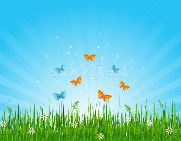 травянистый области бабочки бесшовный иллюстрация цветок Сток-фото © Dazdraperma