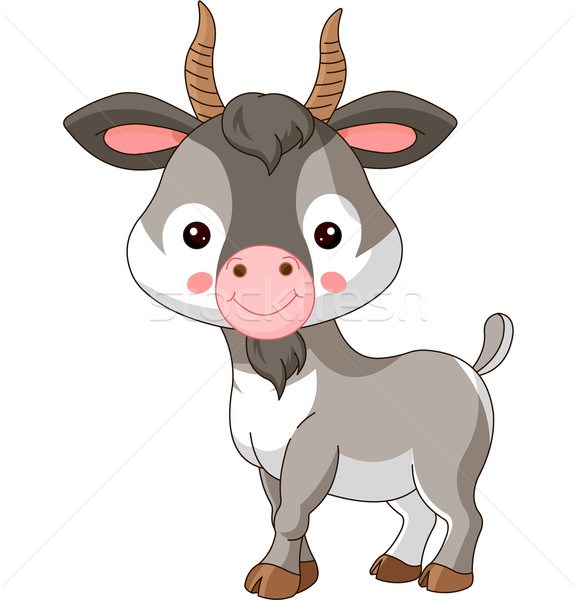 Farm animals. Goat Stock photo © Dazdraperma