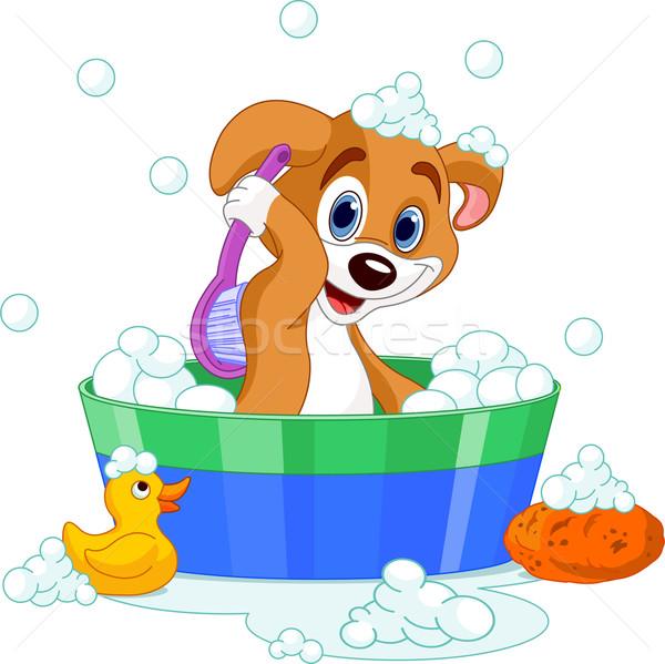 Dog having a  bath Stock photo © Dazdraperma