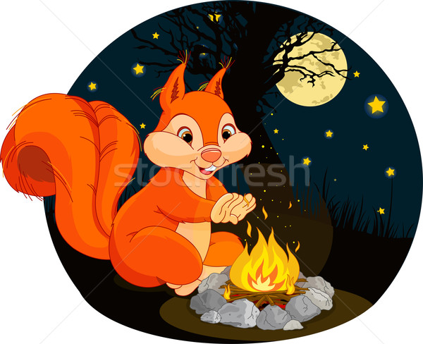 Squirrel campfire Stock photo © Dazdraperma