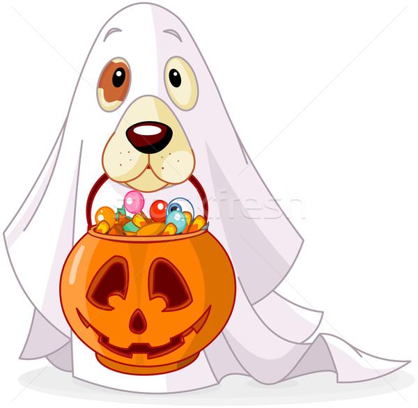 Zdjęcia stock: Halloween · psa · dynia · worek · pełny · candy