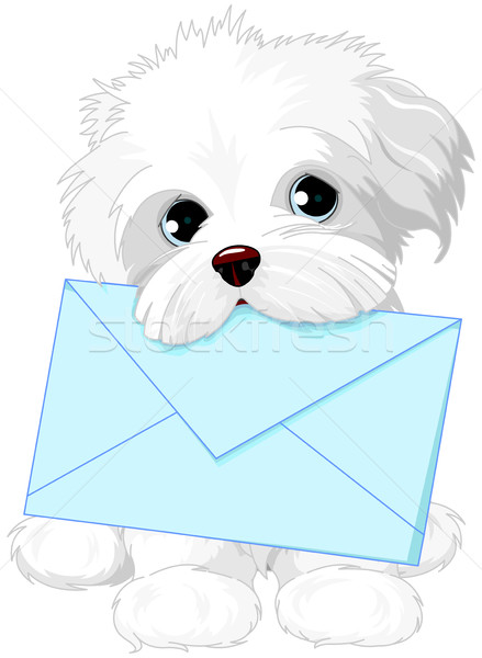 Cute Dog Delivering Mail Envelope Stock photo © Dazdraperma