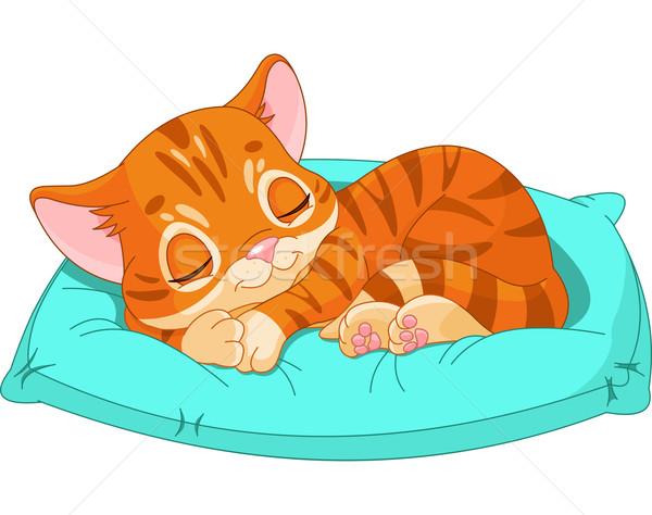 Сток-фото: спальный · котенка · Cute · синий · подушкой · животного