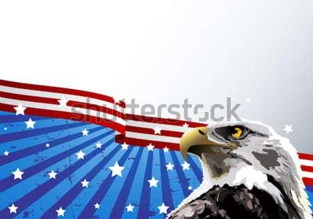 Careca Águia bandeira americana projeto azul bandeira Foto stock © Dazdraperma