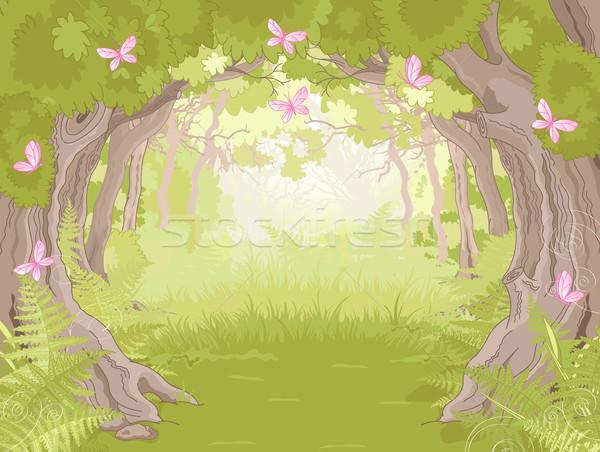 Tisztás mágikus erdő gyönyörű fa háttér Stock fotó © Dazdraperma