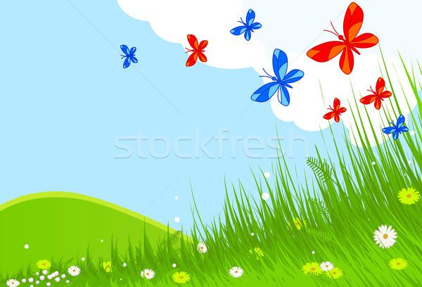 Voorjaar landschap idyllisch vlinders Stockfoto © Dazdraperma