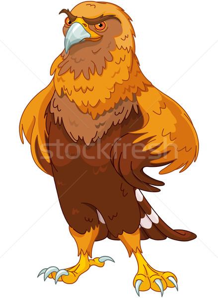 Golden Eagle Stock photo © Dazdraperma