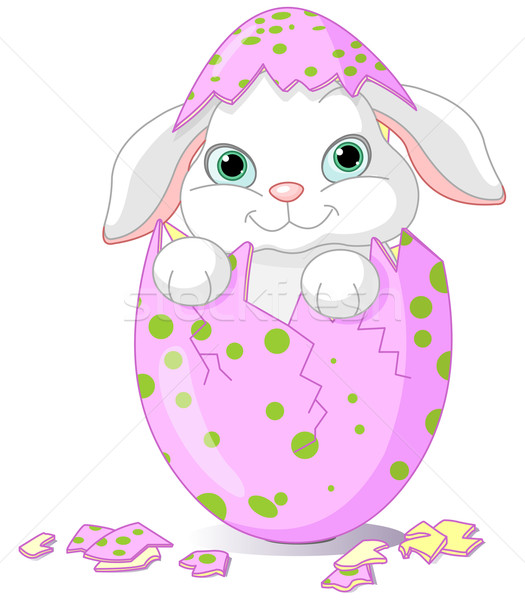 Easter Baby bunny hatched from one egg Stock photo © Dazdraperma