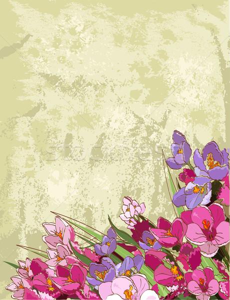 Spring flowers design Stock photo © Dazdraperma