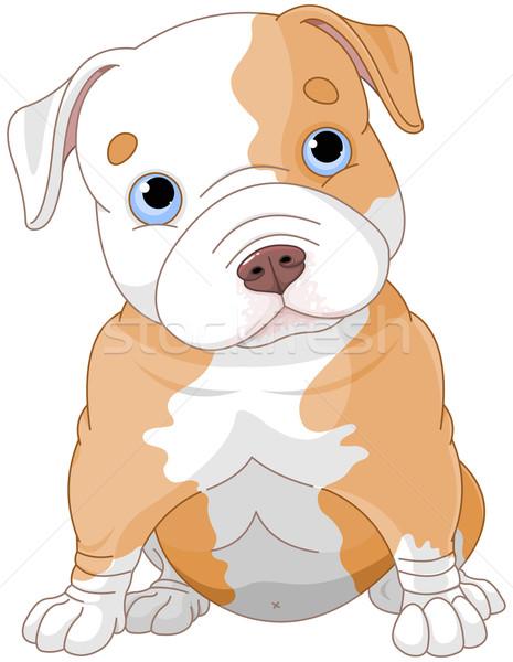 Pitbull kutyakölyök illusztráció aranyos kártya fehér Stock fotó © Dazdraperma