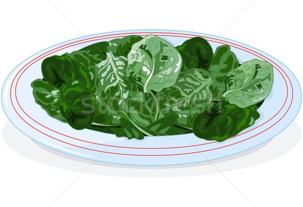 Plaat spinazie illustratie voedsel salade plant Stockfoto © Dazdraperma