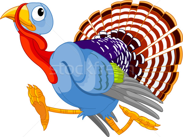 Running Cartoon Turkey Stock photo © Dazdraperma