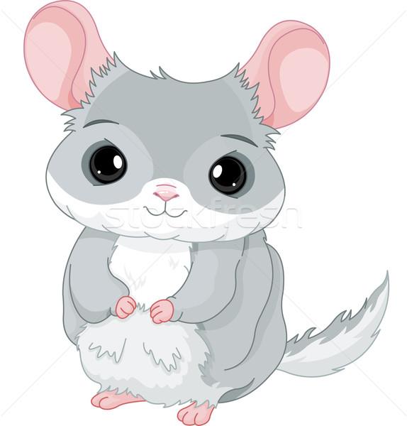 Chinchilla illustration gris bébé souris amusement Photo stock © Dazdraperma