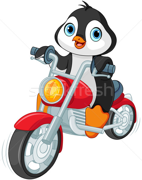 Penguin Motorcyclist Stock photo © Dazdraperma