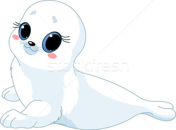 Baby  seal Stock photo © Dazdraperma