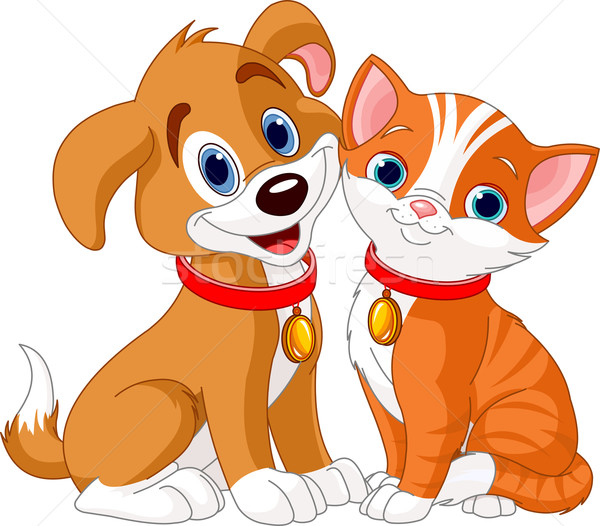 Cat and Dog Stock photo © Dazdraperma