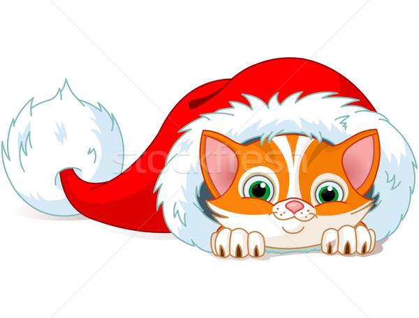 Karácsony macska aranyos piros kiscica baba Stock fotó © Dazdraperma