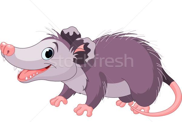 Opossum Stock photo © Dazdraperma