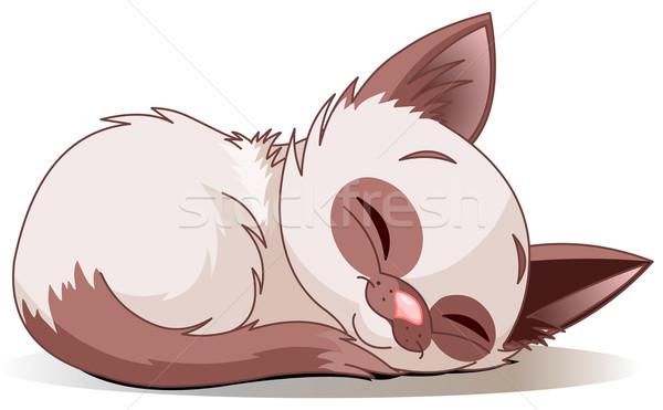 Сток-фото: спальный · котенка · Cute · кошки · весело · рисунок