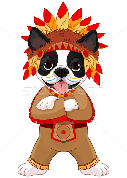 Native American Boston Terrier Stock photo © Dazdraperma