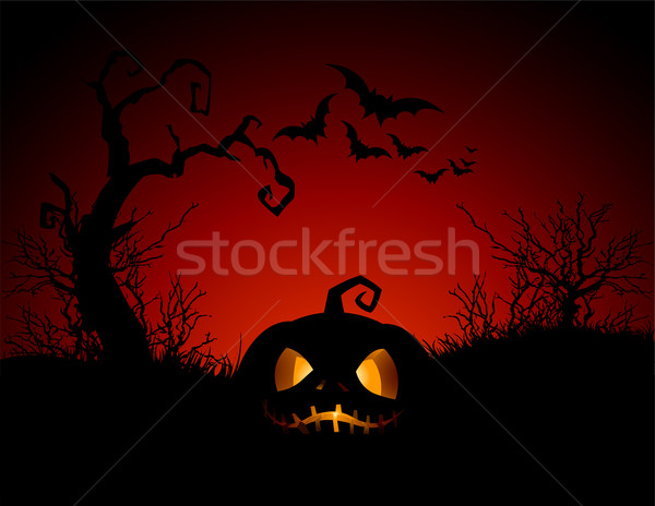 Halloween Pumpkin Stock photo © Dazdraperma