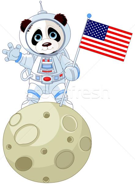 Panda Astronaut Stock photo © Dazdraperma