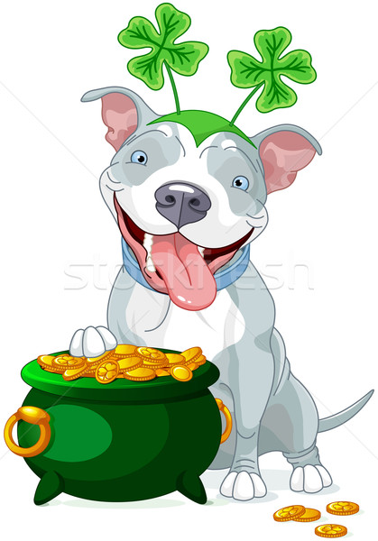 Pit bull celebrates Saint Patrick Day Stock photo © Dazdraperma