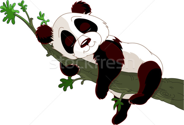 Panda dormir branche cute arbre nature Photo stock © Dazdraperma