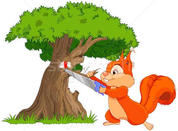 面白い リス 実例 木材 自然 ストックフォト © Dazdraperma