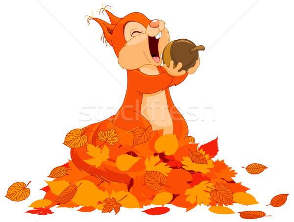 Mókus dió illusztráció aranyos köteg levelek Stock fotó © Dazdraperma