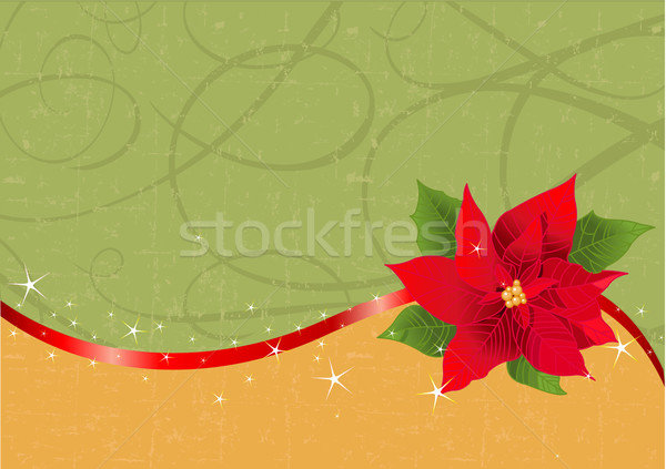Red poinsettia Christmas background Stock photo © Dazdraperma