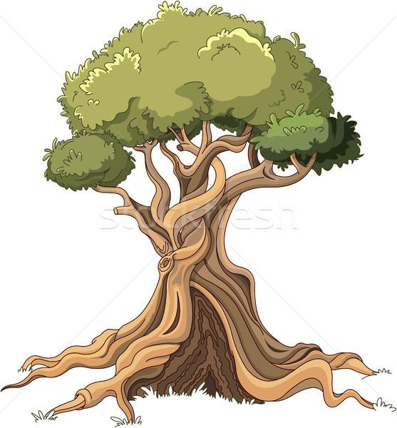 Majestic Tree Stock photo © Dazdraperma