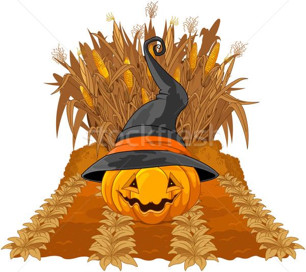 Pumpkin on corn maze  Stock photo © Dazdraperma