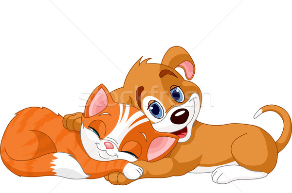 собака кошки Лучшие друзья Cute любви пару Сток-фото © Dazdraperma
