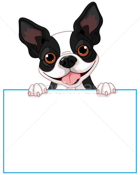 Boston terriyer imzalamak sevimli köpek uzay Stok fotoğraf © Dazdraperma