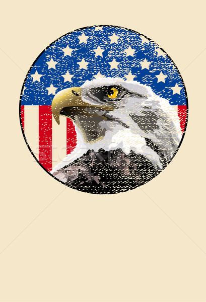 Stockfoto: Kaal · adelaar · Amerikaanse · vlag