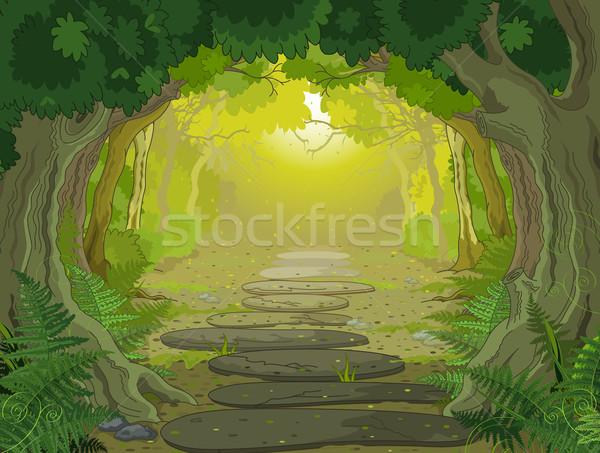 магия пейзаж вход лес деревья папоротники Сток-фото © Dazdraperma