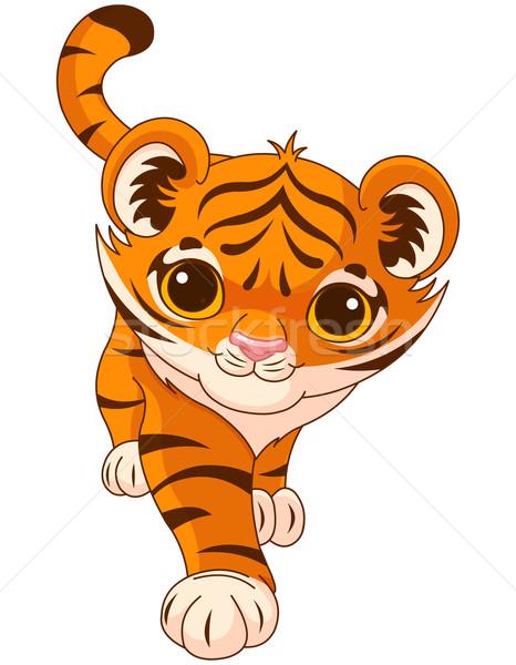 Baby tiger Stock photo © Dazdraperma