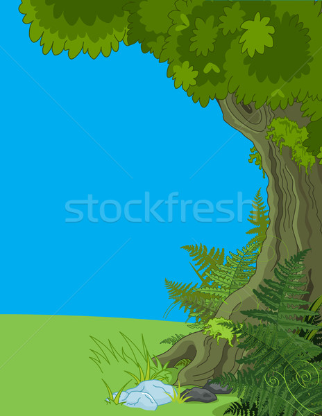 Paysage arbre fougère illustration herbe forêt Photo stock © Dazdraperma
