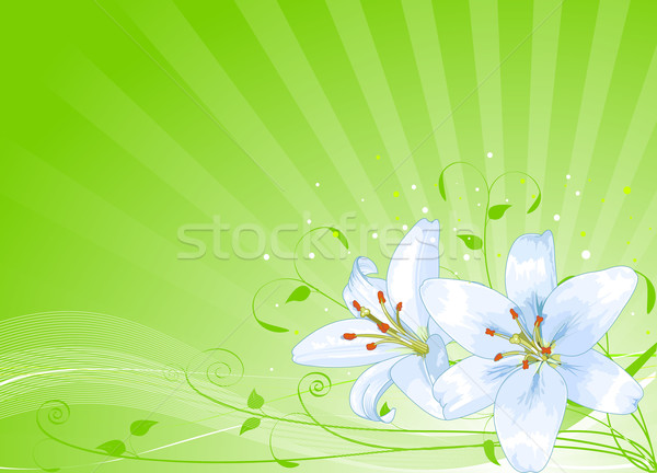 Easter lilies background Stock photo © Dazdraperma